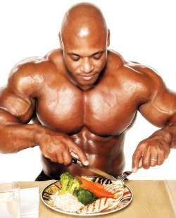 muscoli e proteine