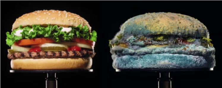 Screenshot_2021-04-08 Burger King il nuovo spot con l'hamburger che ammuffisce perché è senza additivi - Il Fatto Alimentare